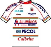 L.A. Aluminios - Pecol 1999 shirt