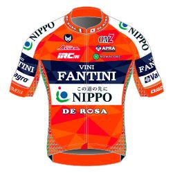 Nippo - Vini Fantini 2017 shirt