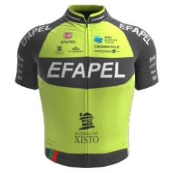 Efapel 2018 shirt