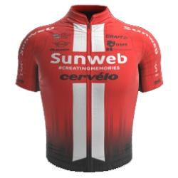 Development Team Sunweb 2019 shirt