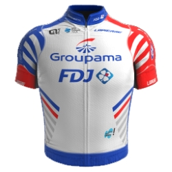 Groupama - FDJ Continental Team 2019 shirt