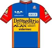 Dromedario - Alan - Sidermec 1983 shirt
