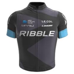 Ribble Pro Cycling 2019 shirt