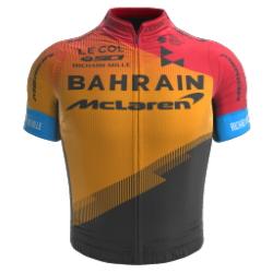 Bahrain - McLaren 2020 shirt