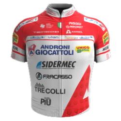 Androni Giocattoli - Sidermec 2020 shirt