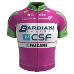 Bardiani CSF - Faizanè 2020 shirt