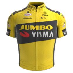 Jumbo - Visma Development Team 2020 shirt
