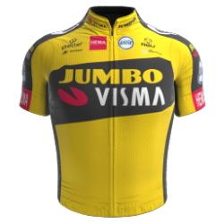 Jumbo - Visma 2021 shirt
