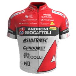 Androni Giocattoli - Sidermec 2021 shirt