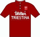 Wilier Triestina 1951 shirt