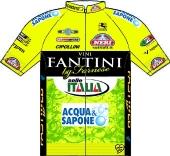 Vini Fantini - Selle Italia 2013 shirt