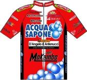 Acqua & Sapone - d'Angelo & Antenucci 2010 shirt