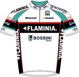 Ceramica Flaminia 2010 shirt
