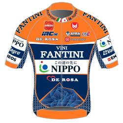Nippo - Vini Fantini 2016 shirt