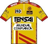 Tensai - Santa Maria de Portuzelo - Mundial Confiança 1992 shirt