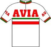 Avia - Groene Leeuw 1978 shirt