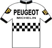 Peugeot - BP - Michelin 1973 shirt