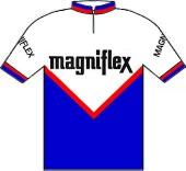 Magniflex 1973 shirt