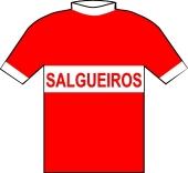 Salgueiros 1973 shirt