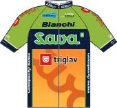 Sava 2012 shirt