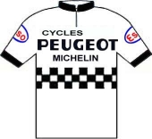 Peugeot - Esso - Michelin 1977 shirt
