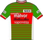 Malvor - Bottecchia - Vaporella 1985 shirt